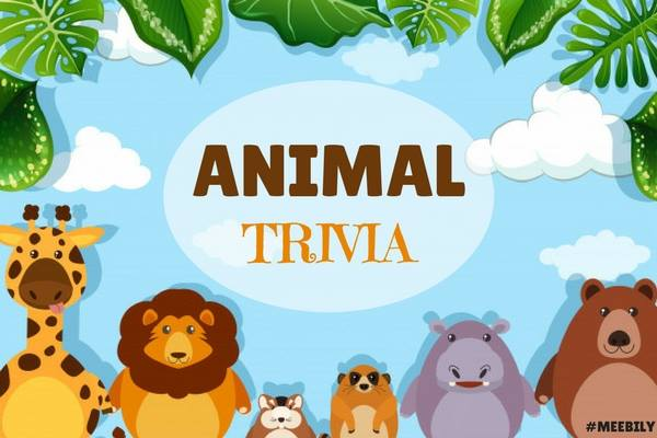 Amazing image with animal trivia questions and answers printable